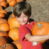Things to do with kids: Pumpkin Patches for LA, Ventura, & Orange County Kids
