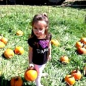 Things to do with kids: Pumpkin Picking with Kids in the Hartford Area