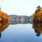 Things to do with kids: 13 Fun Fall Activities to do with Kids in Litchfield County, Connecticut