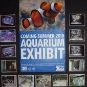 Things to do with kids: Sneak Peak: Turtle Back Zoo's New Aquarium Exhibit