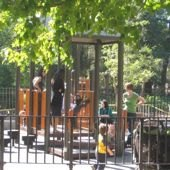 Things to do with kids: Vanderbilt Playground in Prospect Park is Open (Finally!)