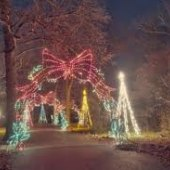 Things to do with kids: Holiday Light Shows in the Hartford Area