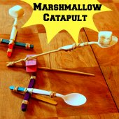 Things to do with kids: WeeWork Kids Activities: Marshmallow Catapults!