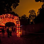 Things to do with kids: Hudson Valley's Best Halloween Celebrations for Kids