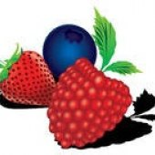 A Very Berry Festival