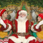 Things to do with kids: Macy's Santaland NYC: A Christmas Tradition