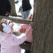 Things to do with kids: Mostly Free and Fun Things to Do This Weekend with Westchester Kids: Maple Sugaring, Chinese New Year, Paul Taylor Dance Company and More, Feb. 28-Mar. 1