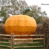 Things to do with kids: Corn Mazes in PA: Take the Kids for Hayrides, Pumpkin Picking and Fall Harvest Fun Near Philly
