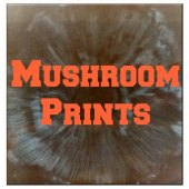 Things to do with kids: WeeWork Kids Nature Crafts: Mushroom Prints