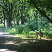 Things to do with kids: Places to Play in Little Neck, Queens: Nature Preserves, a Farm & Indoor Fun