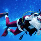 Things to do with kids: Quirky Christmas: Some NJ Holiday Events You May Not Have Heard Of