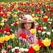 Things to do with kids: Weekend Fun for LI Kids: Tulip Fest, PortFest, Fleece & Fiber Fair, May 16-17