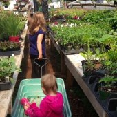 Things to do with kids: Community Gardens  in Hartford County: Gardening With Children