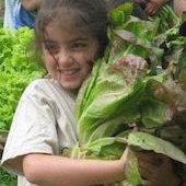 Things to do with kids: Farm Summer Camps for Fairfield County Kids