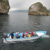 Things to do with kids: Puerto Vallarta with Kids: Best Things to Do on a Family Vacation